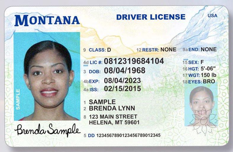 montana driver license