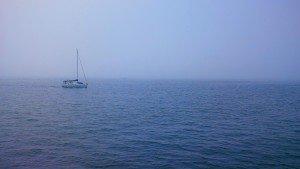 tampa bay summer bucket list things to do tampa bay sailing