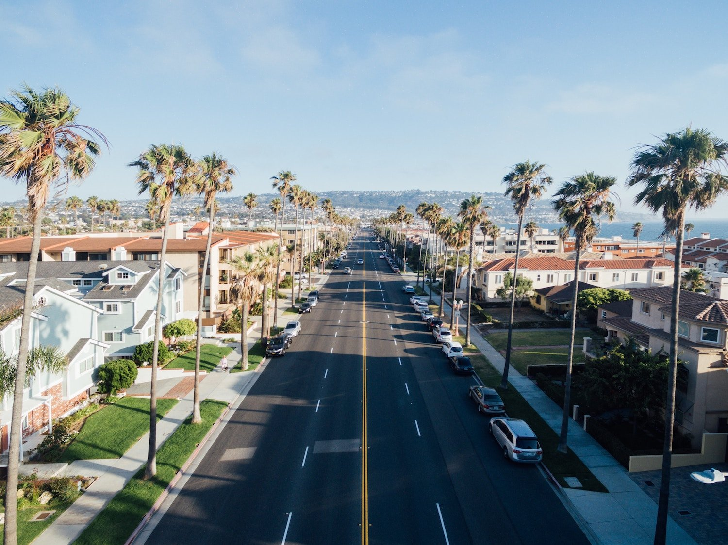 california road with palm trees