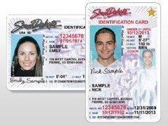 south dakota driver license