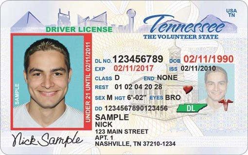 drivers license place trenton tn