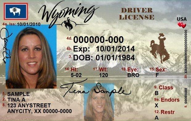 wyoming driver license