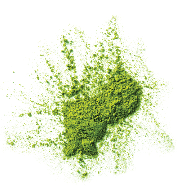 Green Tea - Naturally Serious Skin Care Good Ingredient Glossary