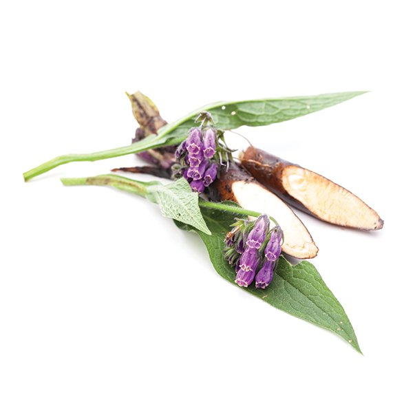 Allantoin - Naturally Serious Skin Care Good Ingredient Glossary