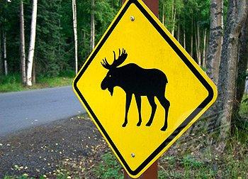 moose crossing sign, Alaska