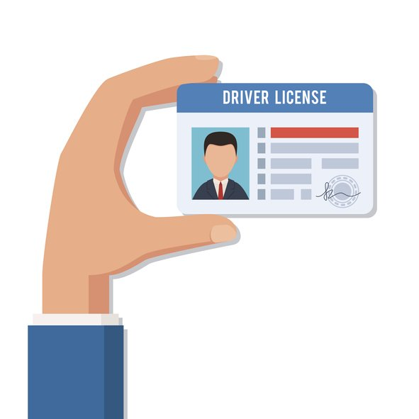 illinois secretary of state drivers license renewal fee