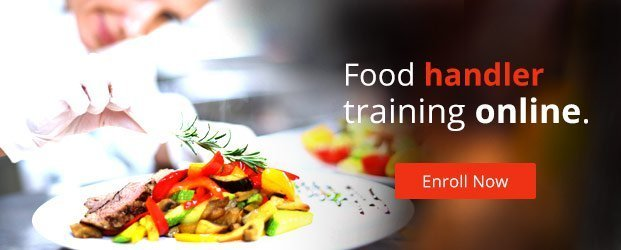 Food handler training online