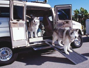car upgrades for road trips for dogs