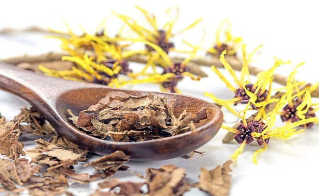Witch Hazel - Peter Thomas Roth Skin Care Ingredient Glossary