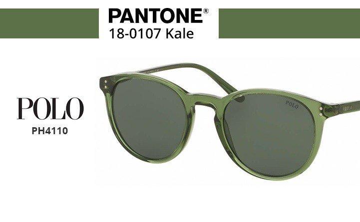 polo sunglasses green
