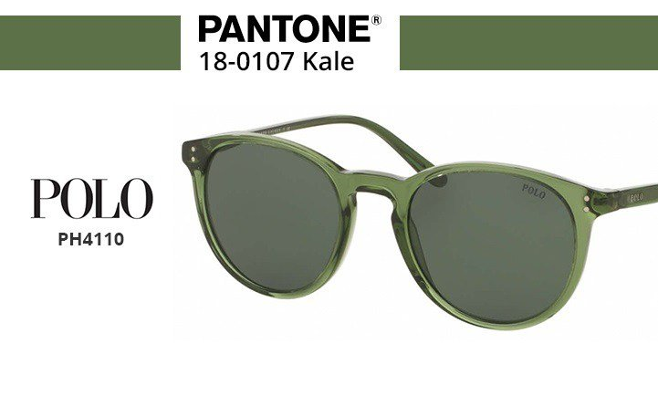 polo sunglasses green