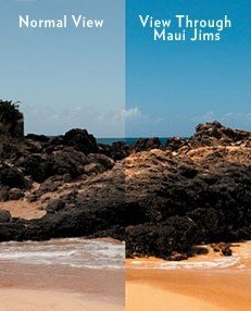 Maui Jim Comparison