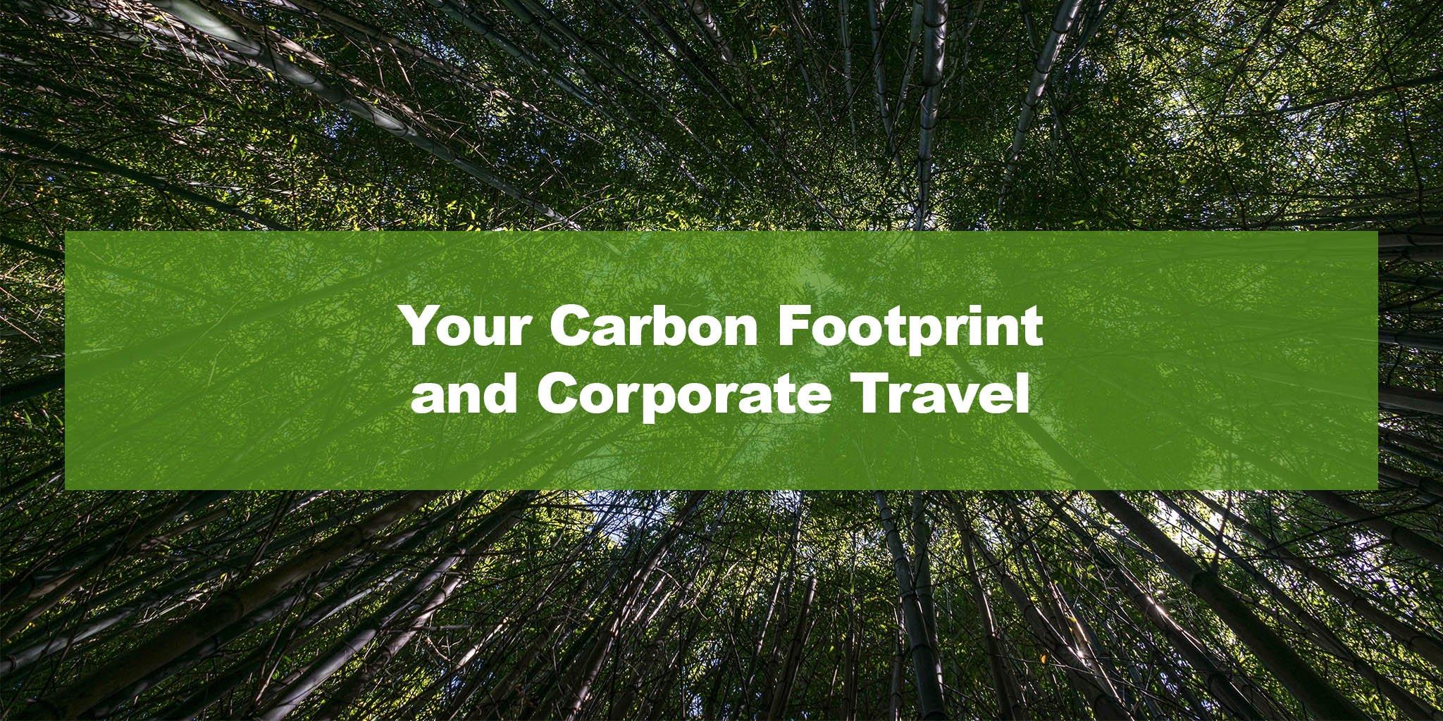 Corporate Air Travel Survey