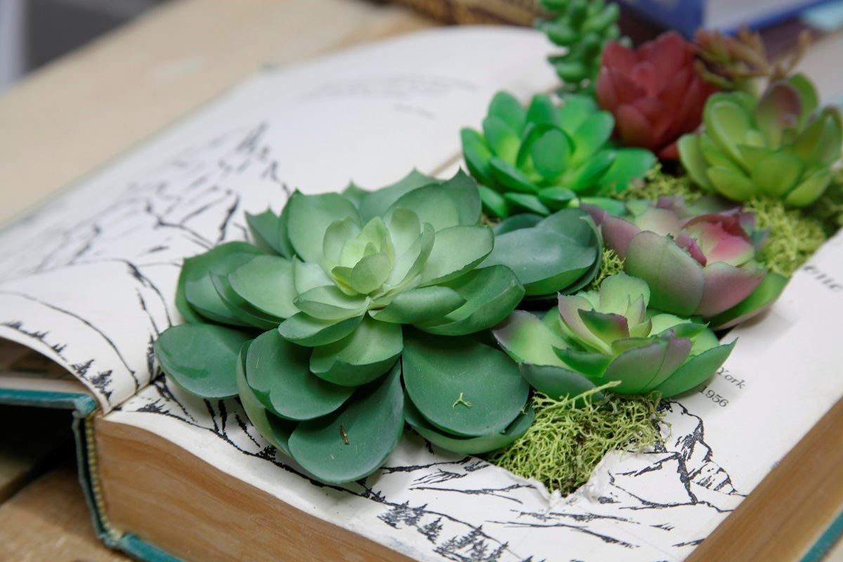 Faux succulent gardens (or real)