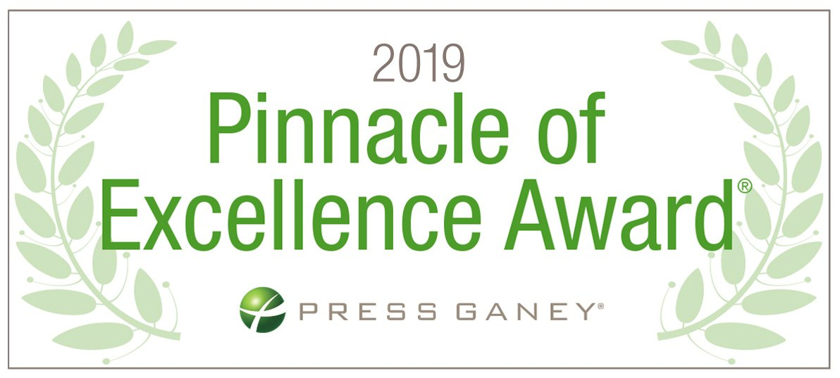 2019 Pinnacle of Excellence Award