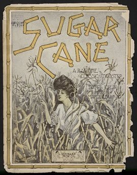 https://assets.winton.com/cms/Images/longer-view/sugar/8-Sugar-Cane.jpg?mtime=20170911145611