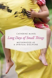 long-days-of-small-things-catherine-mcniel