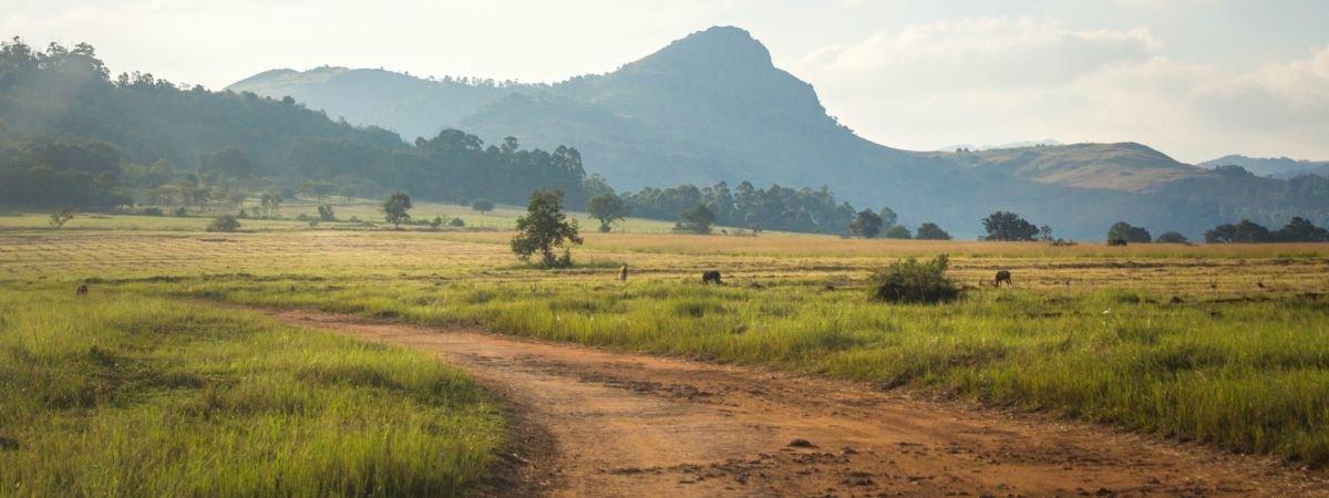 eswatini road trip