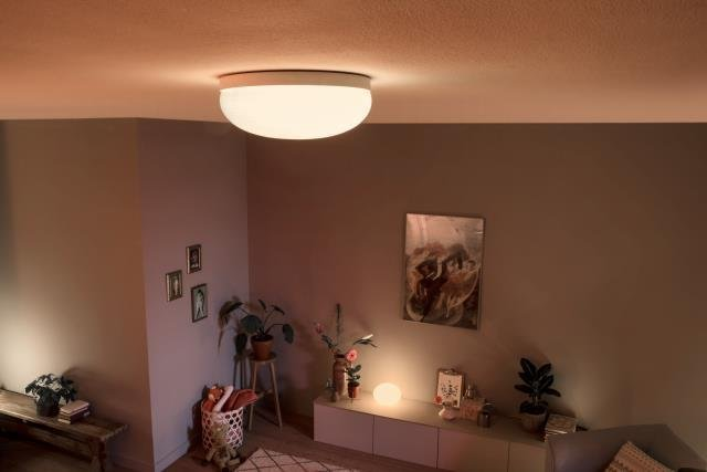 ceiling-mounted light